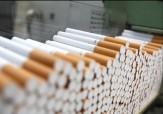 باشگاه خبرنگاران -کشف ۵۴ هزار نخ سیگار قاچاق