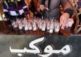 باشگاه خبرنگاران -استقرار ۱۴موکب از استان سمنان در مسیر راهپیمایی اربعین
