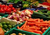 باشگاه خبرنگاران -صدور گواهینامه استاندارد محصولات سالم کشاورزی در آباده