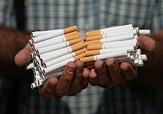 باشگاه خبرنگاران -کشف ۲۴۹ هزار نخ سیگار قاچاق در داراب