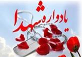 باشگاه خبرنگاران -برگزاری یادواره ۲۲۰ شهید مرکز شهر شیراز
