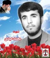 باشگاه خبرنگاران - زندگی نامه شهیدعبدی