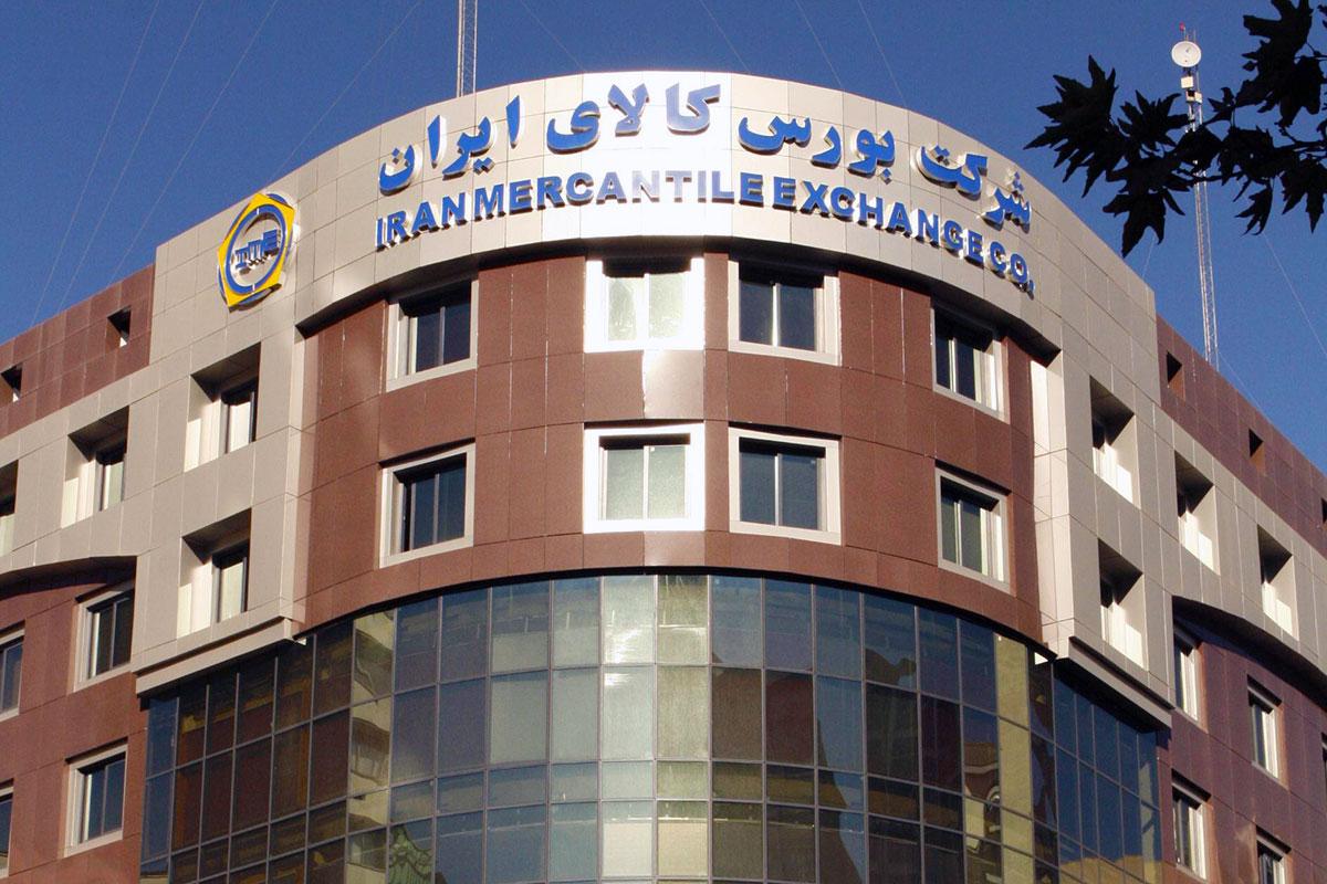 باشگاه خبرنگاران -عرضه گندم صادراتی ۶ استان از طریق بورس کالا