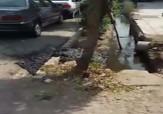 باشگاه خبرنگاران -فیلمی از وضعیت نامناسب بهداشت در خیابانهای آبادان