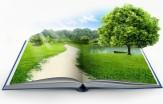باشگاه خبرنگاران -پیشبینی افزایش مدارس طبیعت در برنامه ششم توسعه