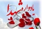 باشگاه خبرنگاران -برگزاری یادواره شهدای انقلاب روستای نیارق شهرستان نمین