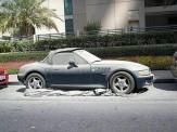 باشگاه خبرنگاران -ماشینهای لوکس در دبی رها میشوند! +عکس