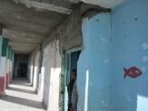 باشگاه خبرنگاران -نبود بودجه، آوار مدارس فرسوده را بر سر دانشآموزان میریزد/ آموزش و پرورش تکلیف ساختمانهای استیجاری را مشخص کند
