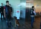 باشگاه خبرنگاران -اقدام متقابل ترکیه پس از بازرسی اتباعش با سگ در فرودگاه وین + فیلم