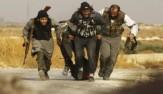 باشگاه خبرنگاران -تروریستها پس از فرار از سوریه به کدام کشورها میروند؟