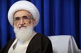 باشگاه خبرنگاران -ممنوعیت عزاداری امام حسین(ع) در بعضی از کشورهای عربی /مراسم اربعین مانور بزرگ شیعیان است