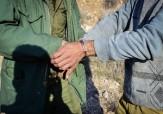 باشگاه خبرنگاران -دستگیری 2 شکارچی غیرمجاز پرندگان وحشی در بیله سوار