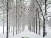 باشگاه خبرنگاران -غافلگیری مردم قزاقستان در پی نخستین بارش برف در این کشور