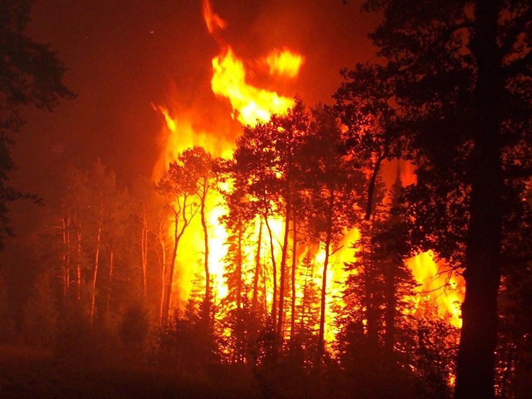 آتش سوزی در جنگل های جنوب کالیفرنیا / تخلیه صدها نفر شد