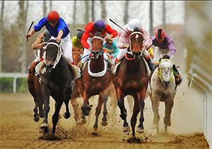 مرگ دردناک اسب در مسابقات سوارکاری + فیلم