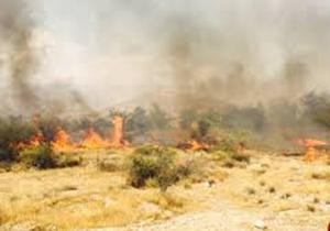 آتش در باغات روستای قلعه طارم سفلا