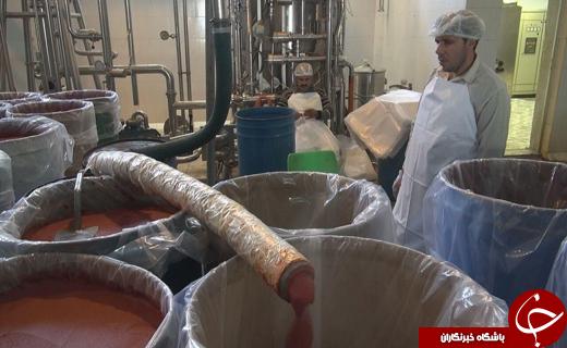 کردستان در مسیر صنعتی شدن