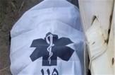 باشگاه خبرنگاران -مرگ عابر پیاده در برخورد با کامیون در اتوبان ساوه _تهران