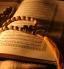 باشگاه خبرنگاران - نکاتی مهم که باید درباره قرآن بدانید