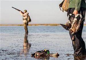 شکار پرندگان مهاجر ممنوع است