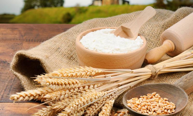 عرضه گندم در بورس کالا نسخه شفا بخش ارتقای کیفیت/ماجرای بی کیفیتی نان پایان می یابد