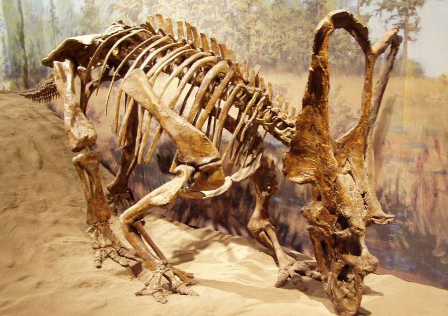 مشهورترین جانوران منقرض شده