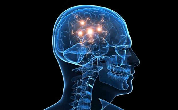 1-دانشمندان ثابت کردند؛ یافتههایی جدید درباره خطررانندگی درهنگام خستگی2-هنگام خستگی سلولهای مغزی مسیرهای ارتباطی باهم را گم میکنند3-چراهنگامی که خسته هستید مغزتان هنگ میکند