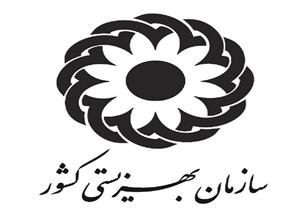 پیام تسلیت معاون وزیر و رئیس سازمان بهزیستی کشور به بازماندگان زلزله کرمانشاه