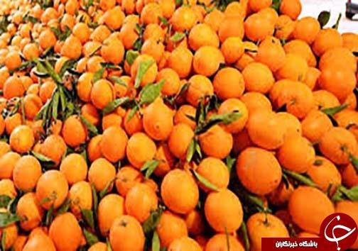 نگاهی گذرا به مهمترین رویدادهای دوشنبه ۲۲ آبان ماه در مازندران