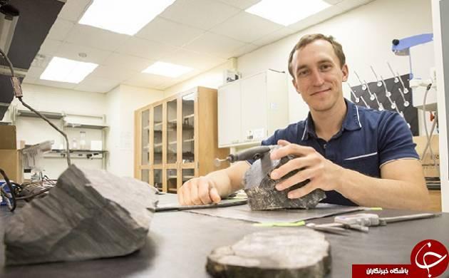 کشف فسیل های یک جنگل 260 میلیون ساله در قطب جنوب!+ عکس