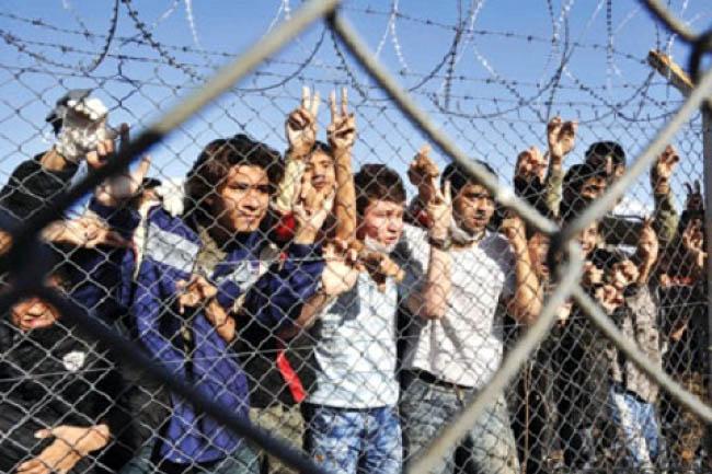 برگزاری کارگاه آموزشی استفاده از اصطلاحات مهاجرت
