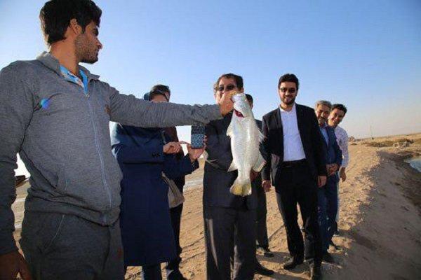 طرحهای آبزیپروری در تنگستان گسترش مییابد