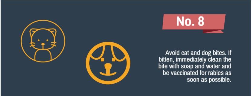 1-توصیههای ایمنی در زمان بروز زلزله و روزهای پس از آن+تصاویر2-راهکارهای طلایی که شما را پس از زلزله ایمن نگه میدارد+تصاویر3-توصیههای سلامتی پس از زلزله برای سلامت جسم و روح+تصاویر