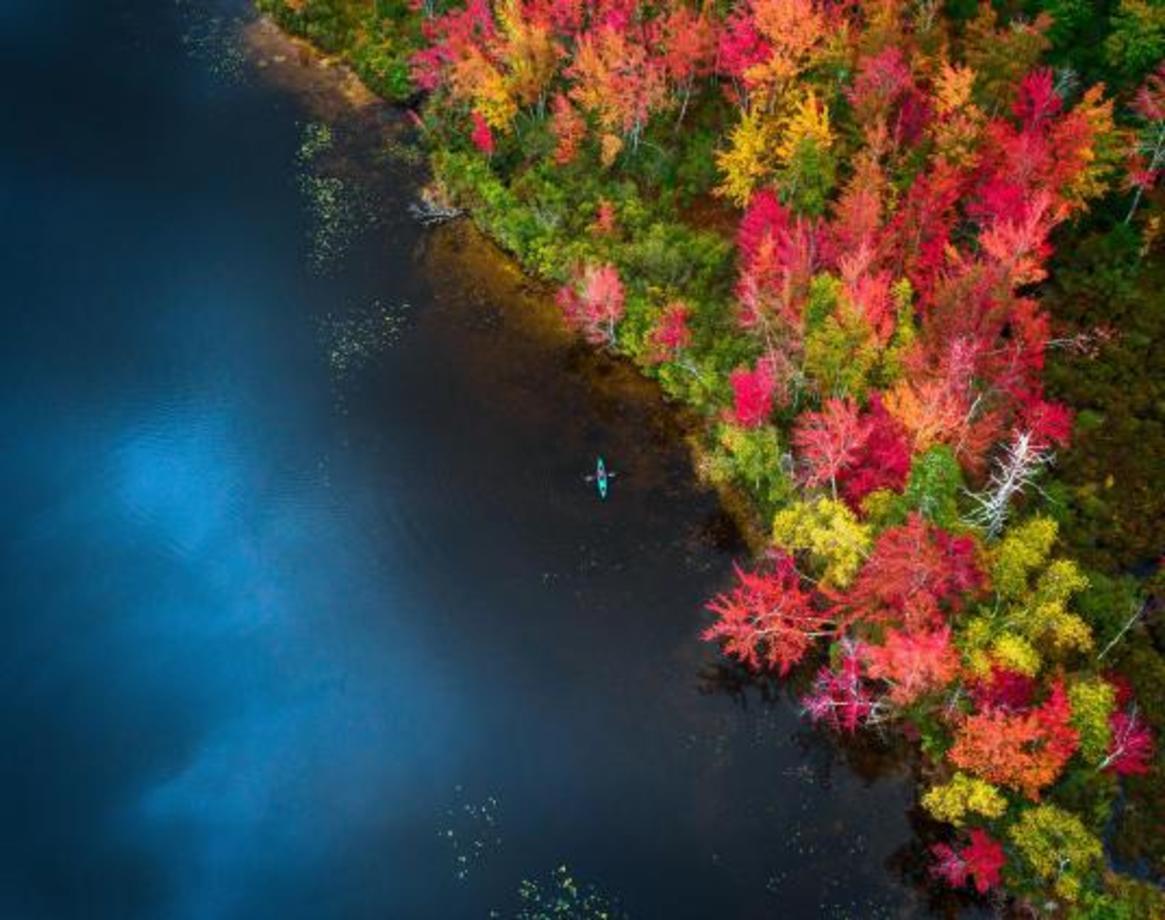 تصاویر حیرت انگیز از پاییز پادشاه فصلها