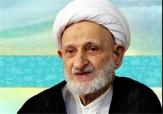 باشگاه خبرنگاران - زیارت امام رضا (ع) شاید افضل از حج باشد+ فیلم