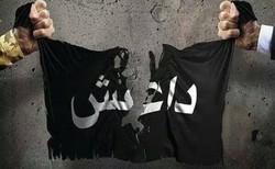 پایان حضور داعش در سوریه، وعده محقق شده سردار سلیمانی + صوت