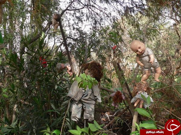 راز جزیره ترسناک عروسکها در مکزیک+ تصاویر