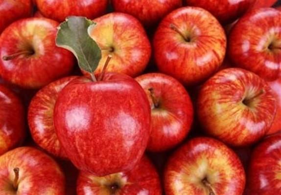 باشگاه خبرنگاران - سیب های سرخ گلزار رو سیاه در برابر کشاورزان