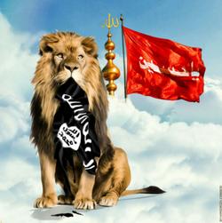 #وعده_ صادق/ سردار سلیمانی انتقام شهید حججی را گرفت