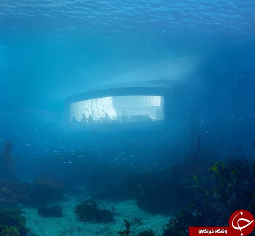 افتتاح نخستین رستوران زیرآبی جهان در اروپا+تصاویر