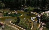 باشگاه خبرنگاران - پارک جنگلی لویزان، تفریحگاهی دلپذیر برای یک آخر هفته پاییزی