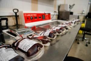 7155198 799 - اهدای بیش از 58 هزار واحد خون در گیلان