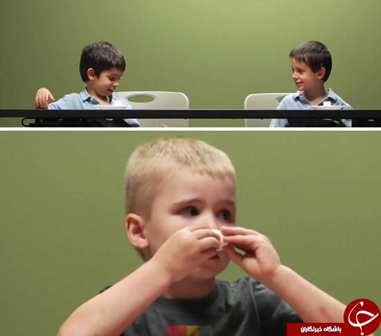 عجیب ترین آزمایشهای روانشناسی با نتایج باورنکردنی و ناراحت کننده +تصاویر