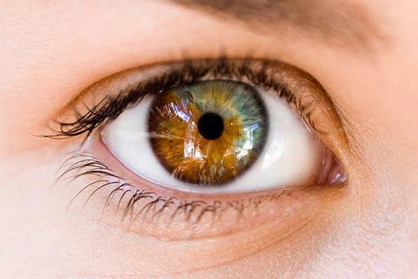 چه عواملی رنگ چشم نوزاد شما را تشخیص می کند؟