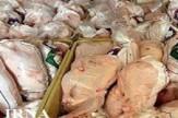 باشگاه خبرنگاران -امحاء بیش از ۳۴۰ کیلو مرغ و آلایشهای دامی غیر بهداشتی در اراک