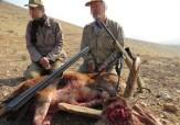 باشگاه خبرنگاران -دستگیری سه نفر از شکارچیان غیرمجاز در مهریز