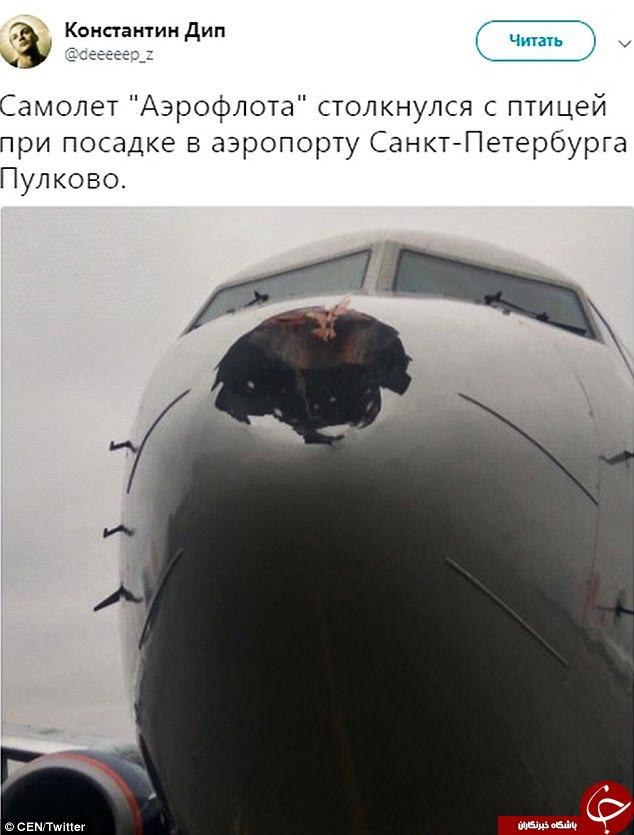 برخورد پرنده، موجب سوراخ شدن هواپیمای روسی در آسمان شد! تصاویر