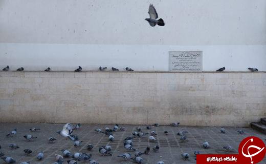 یادگاریهای داعش بر پیکره دمشق +تصاویر