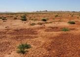 باشگاه خبرنگاران -خلاء مطالعات آلودگی خاک در استان مرکزی / آلودگی خاک بر زنجیره غذایی تاثیرگذار است