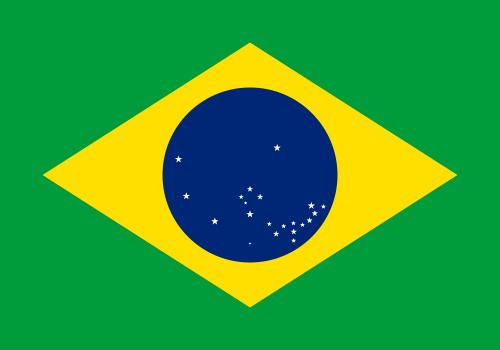 کشته شدن ۵۸ فعال حقوق بشری در برزیل در سال ۲۰۱۷
